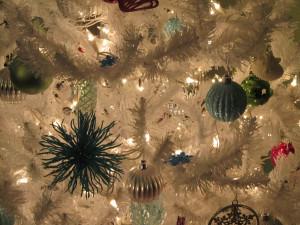 tree-closeup