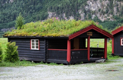 NorweigenGreenRoofs5-500x328[1]