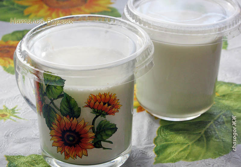 две кружки йогурта в день