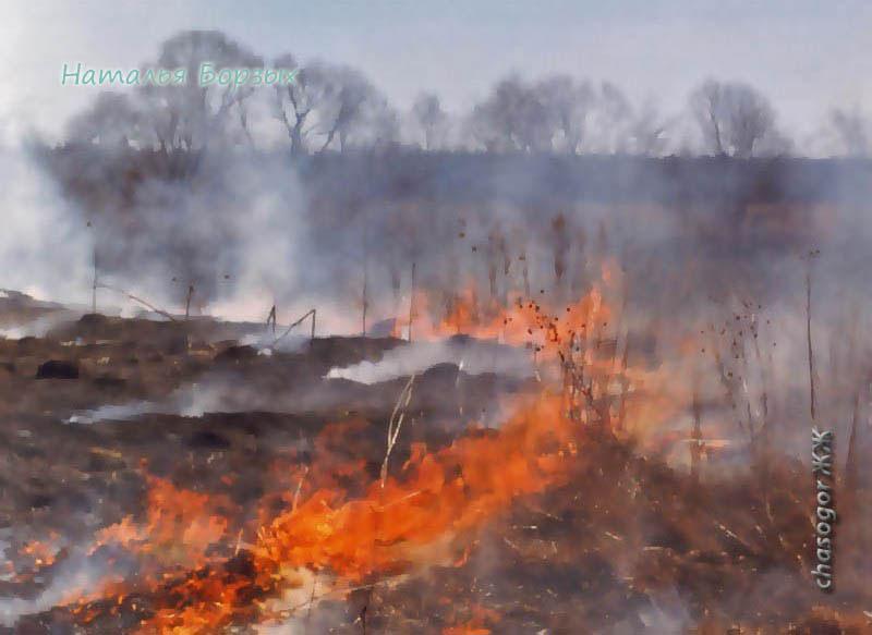 очистка пустыря огнём, 1996 год