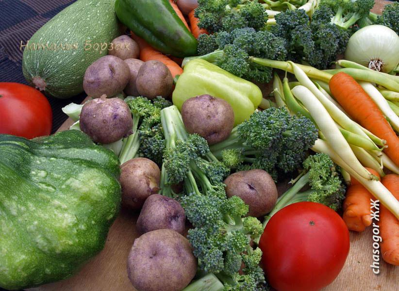 первое овощное рагу