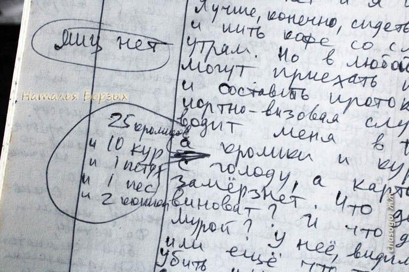 дневник 94 года