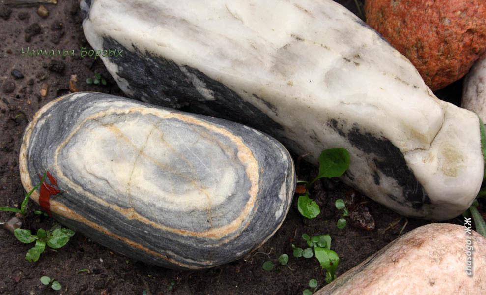 и только камням хорошо при дожде - чистые и яркие