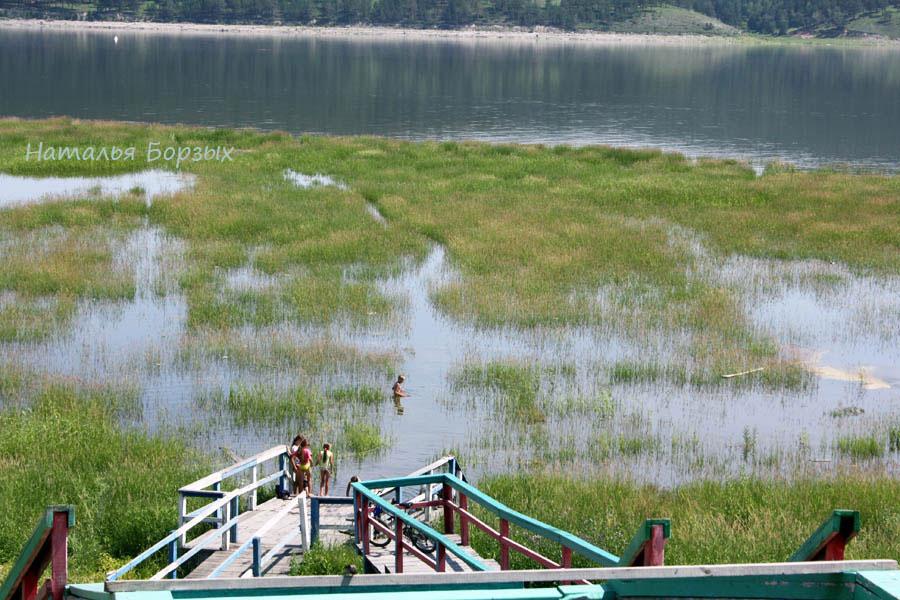 2019 год, начало июля. Мель, заросшая травой, начинает уходить под воду.
