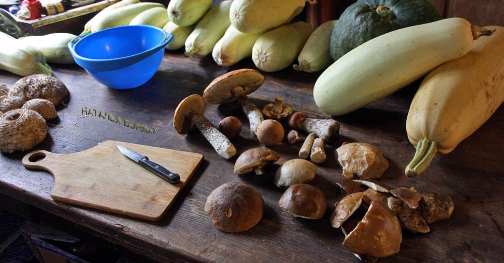 собрала грибов