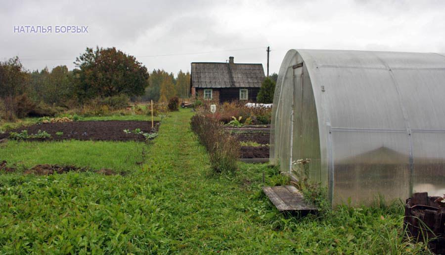 вид на огород и дом