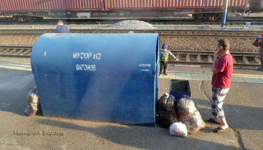 на тему мусора