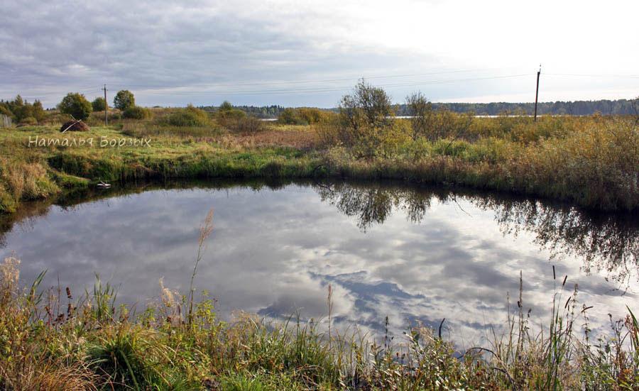 пруд с рыбой, а на горизонте - озеро