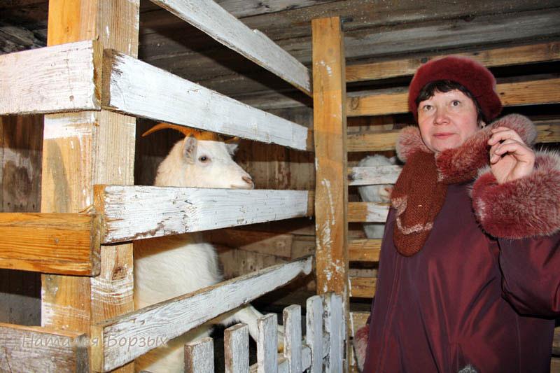 Анна в козлятнике
