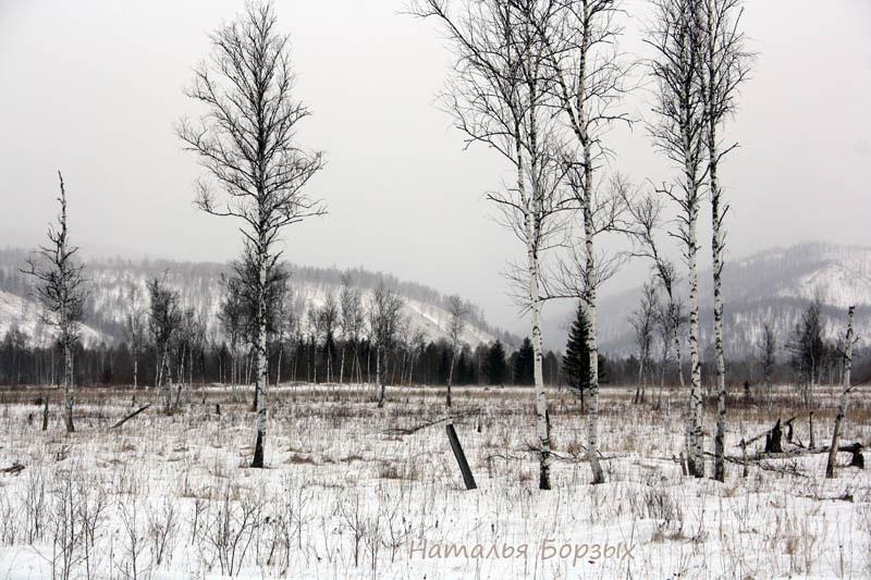 манская долина в марте
