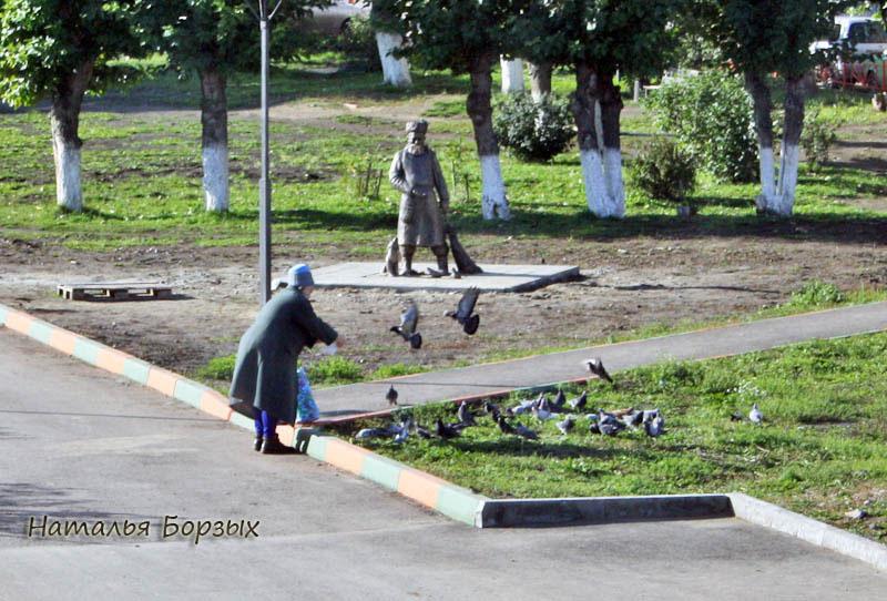 третий год наблюдаю, как эта женщина приносит сумки с кормом и раздаёт его голубям