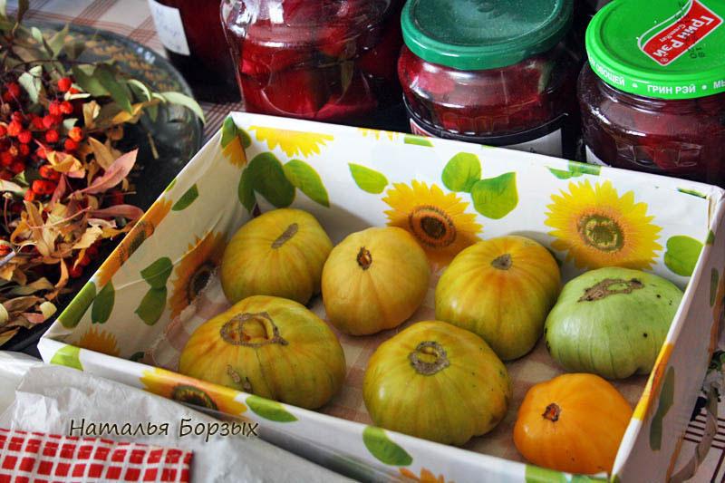 последние мои помидоры дозрели