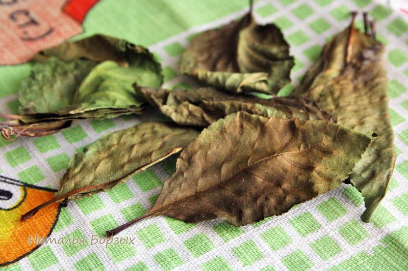 ферментированный вишнёвый лист для чая