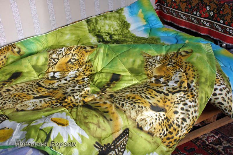 тигры из жарких стран