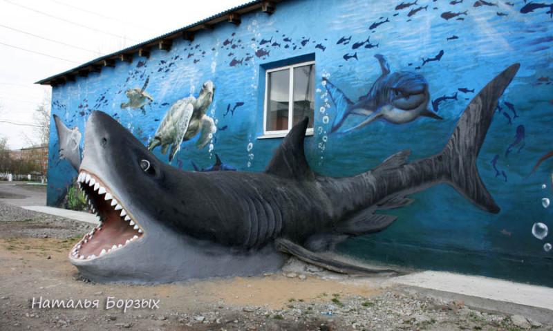 свирская акула