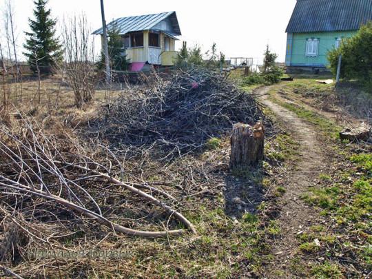 весенняя расчистка сада