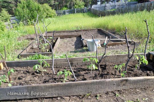 огород на террасе