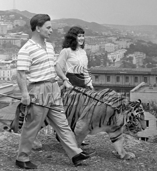 Прогулка по Тигровой сопке