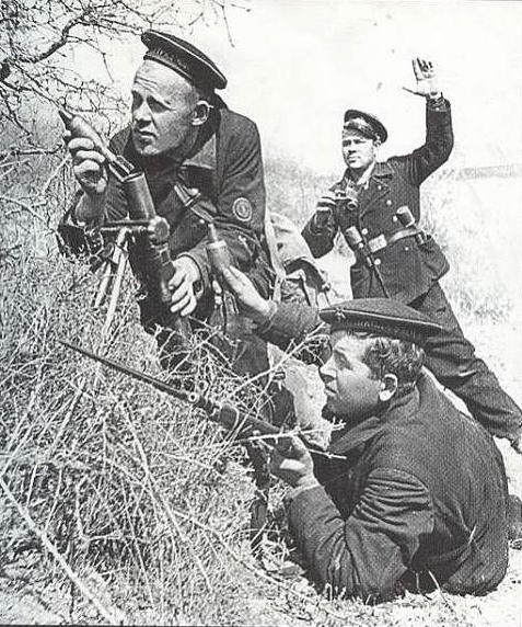 Связисты морская пехота севастополь
