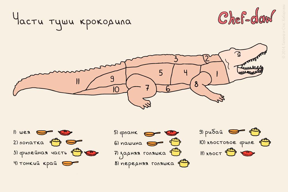 chef_daw_crocodile_parts