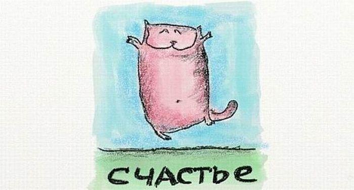 cats_11