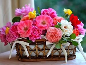 Цветы на день рождения