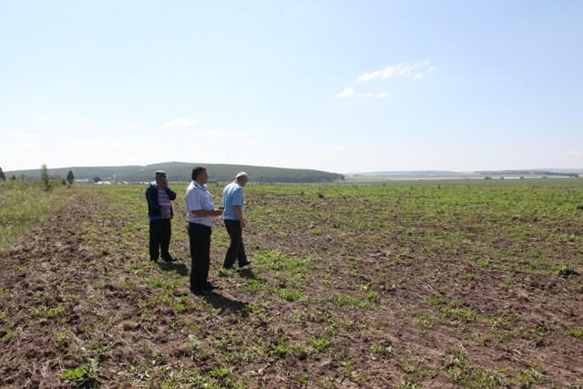 Об обороте земель сельскохозяйственной назначения челябинской области