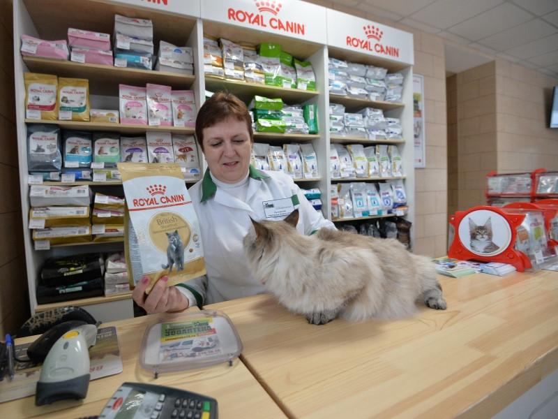 Зоомаркет Интернет Магазин В Челябинске