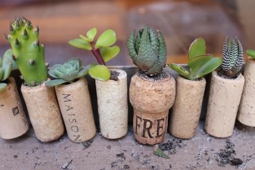 cork_planters11-500x333
