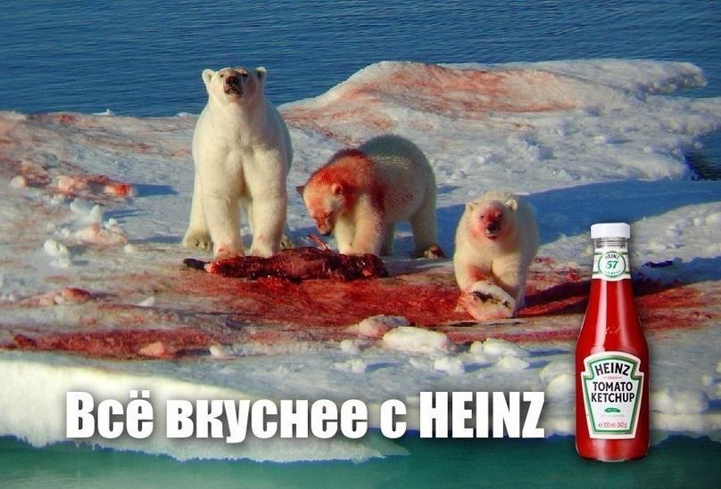кетчуп-белые-медведи-доброта-песочница-498726
