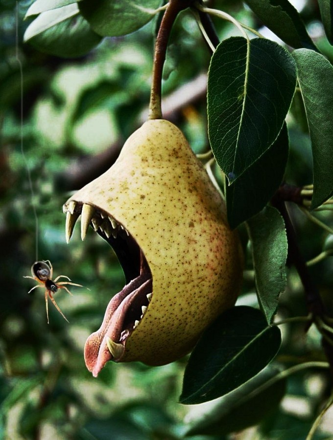 Pear-with-Bite--58442