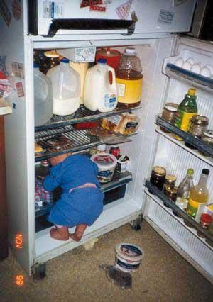 fridge-hunter