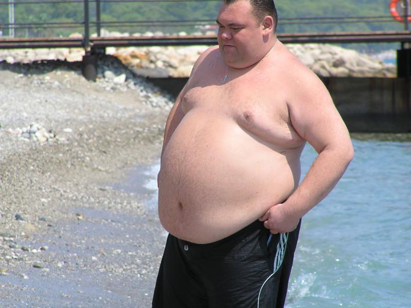 смешные фото толстяков на аву как штакетник