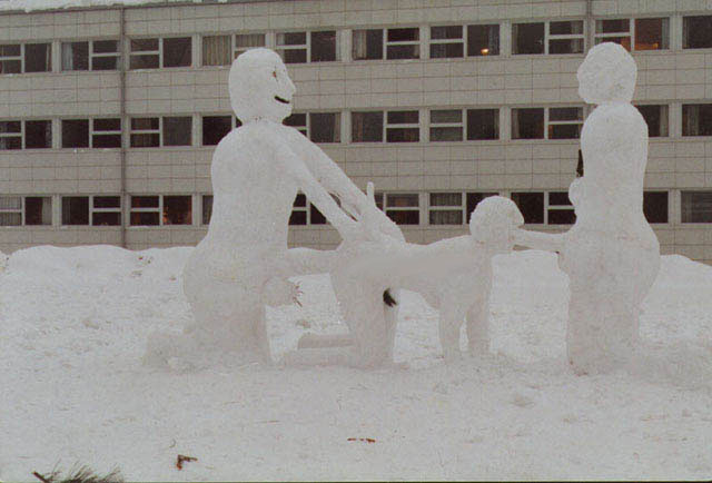 snowblow
