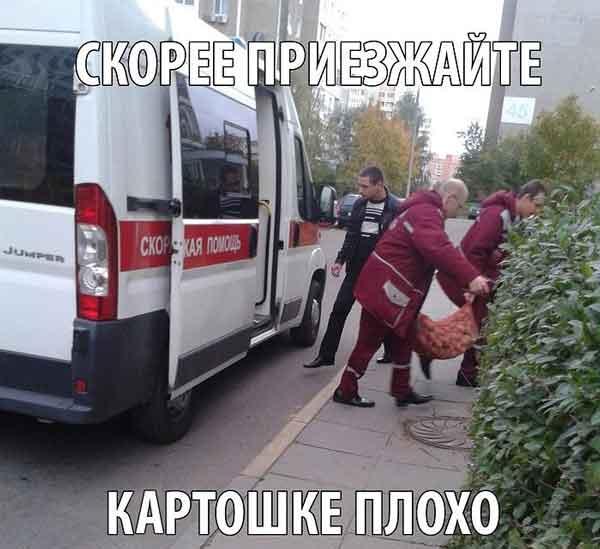 prikolnye_foto_s_nadpisyami_17
