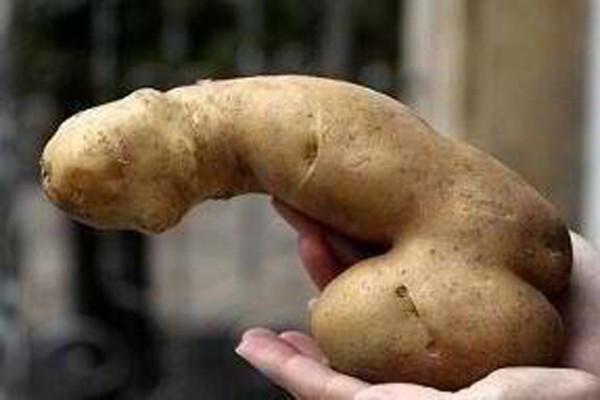 Порно с картошка
