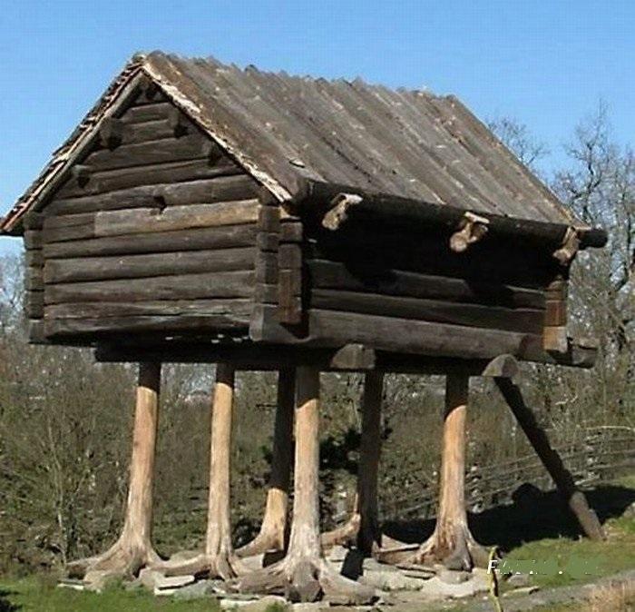 Смешные картинка дом, картинки
