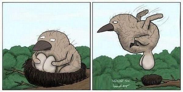 песочница-карикатуры-птица-яйца-94019