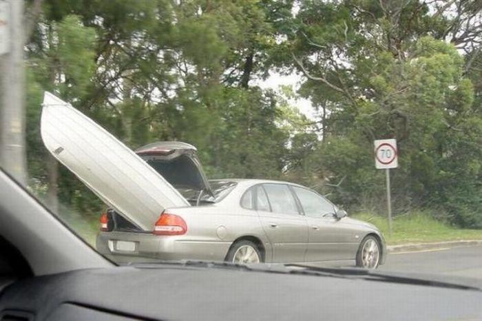 hilarious_ways_of_transportation_14