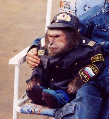 militsioner_monkey