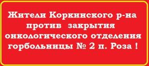 Жители Коркинского района против закрытия..jpg