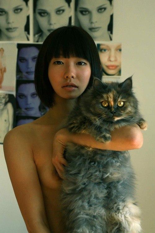 фото красивых котов ню