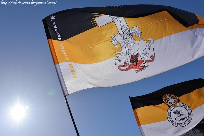 Наши флаги на пикете