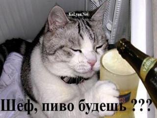 http://ic.pics.livejournal.com/chernof/10289192/7503/7503_320.jpg