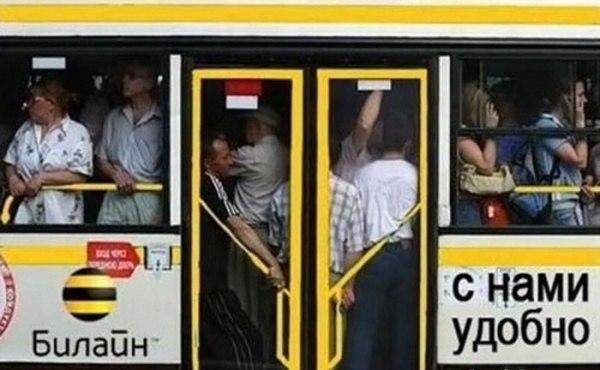 билайн автобус