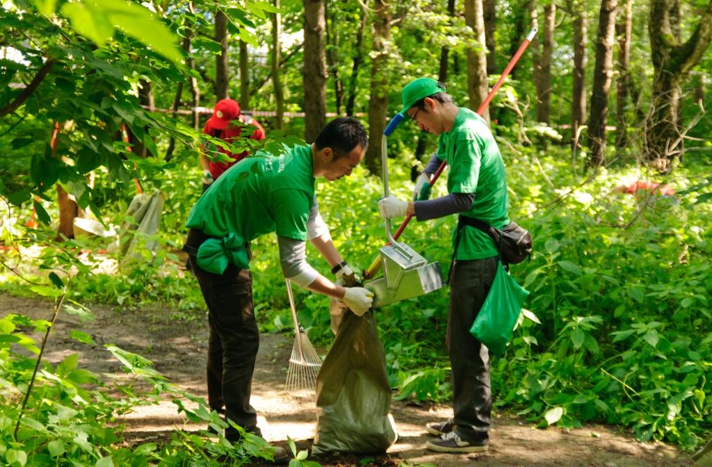 Зеленый день Тойота 2012_фото 1