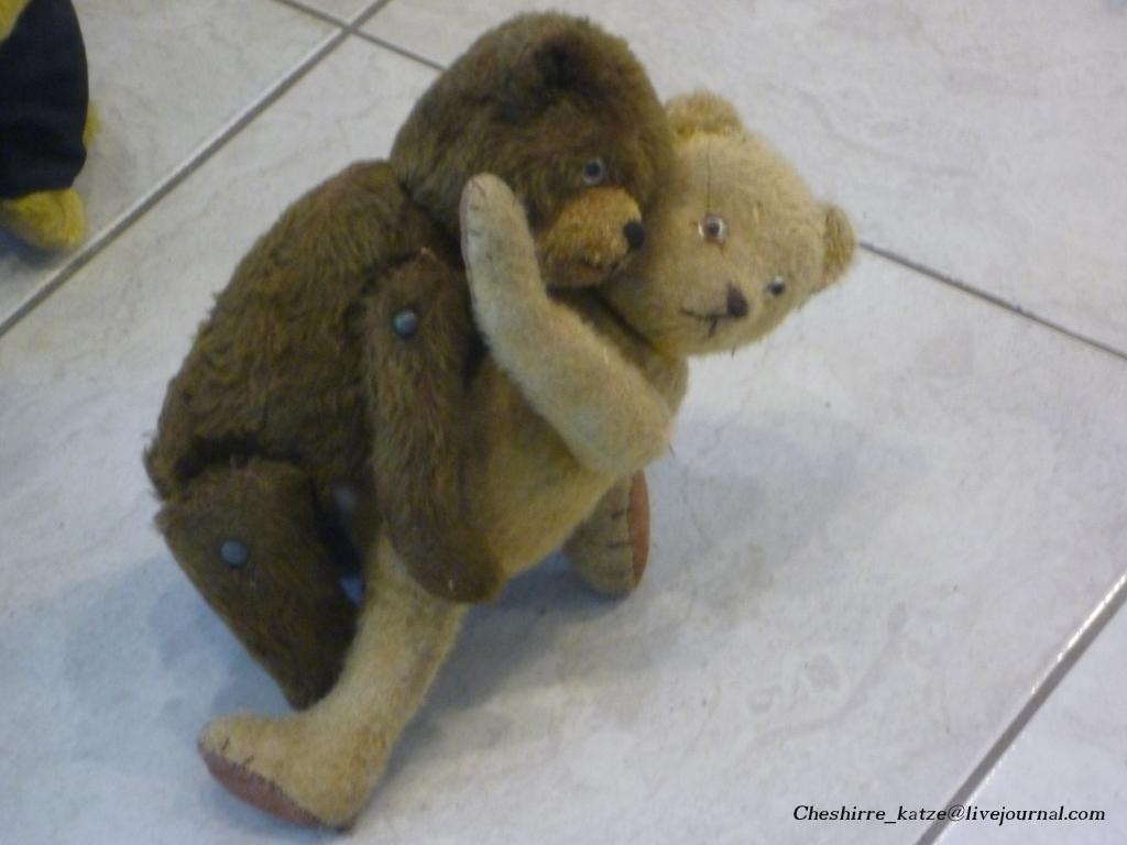 13 - Tanz mit Bär