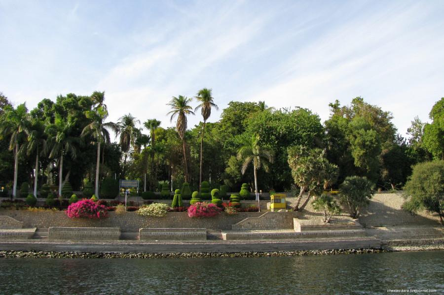 122 Египет - 0000 491.jpg
