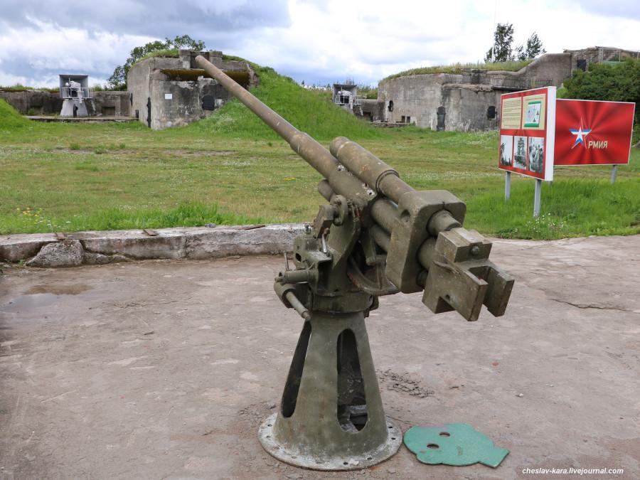 45 мм 21-КМ _20 (бат Демидов, Кр-дт).JPG
