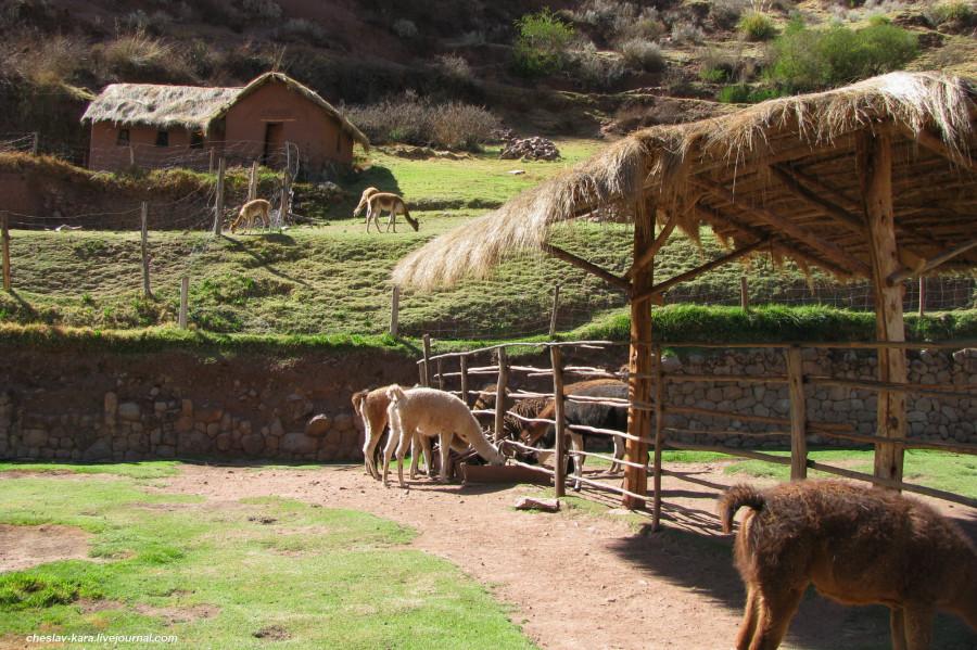 4 Перу - 2 - 026.jpg